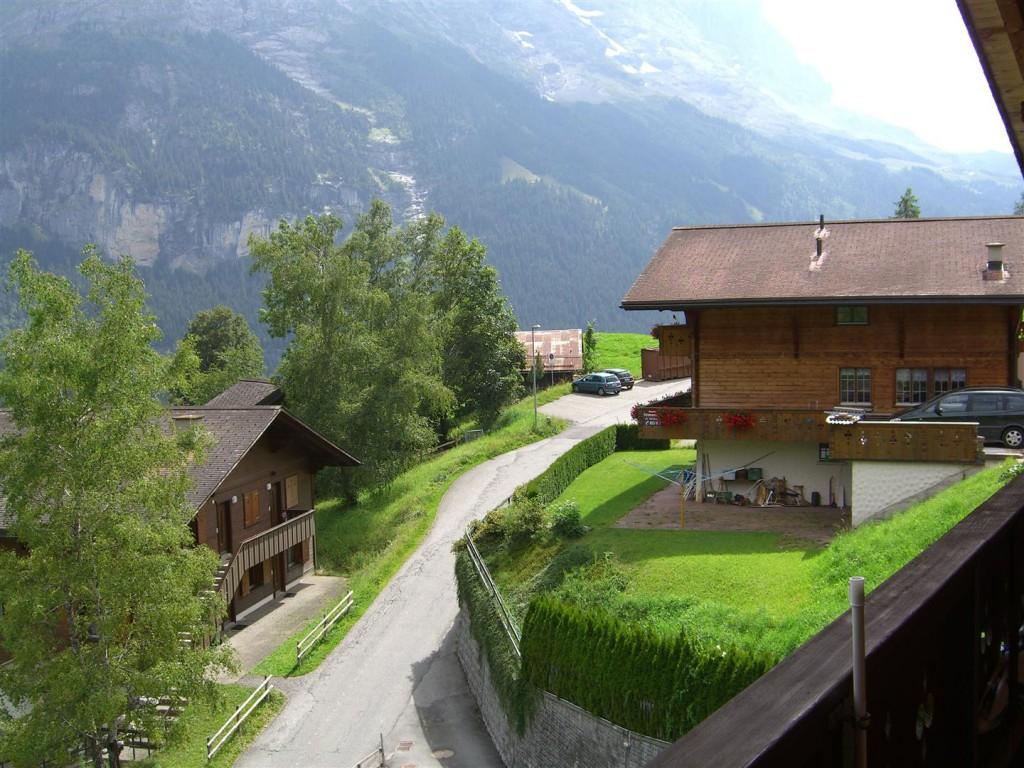 Sommer: Westsicht unterer Gletscher / Eiger